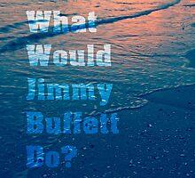 What would Jimmy Buffett do? by Edward Fielding