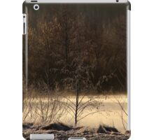 14.3.2015: Cold Spring Morning by the River iPad Case/Skin