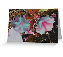 Colorized White trumpets Greeting Card