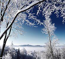 Jizerské hory by Zuzana D Photography