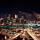 Minneapolis Skyline by Joyce  D. Z.