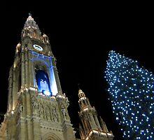 Vienna Rathaus by profusemoose