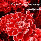Falling in Love by Tracy DeVore