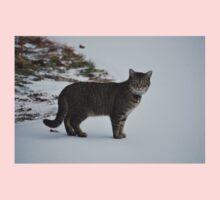 Cat in snow   Baby Tee