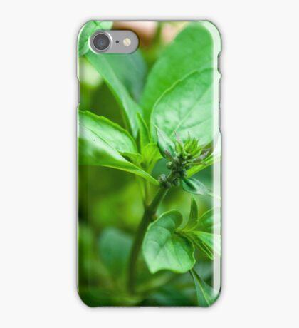 Kitchen Crop iPhone Case/Skin