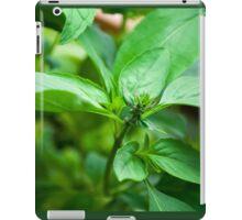 Kitchen Crop iPad Case/Skin