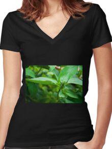 Kitchen Crop Women's Fitted V-Neck T-Shirt