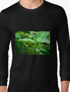 Kitchen Crop Long Sleeve T-Shirt