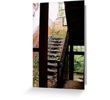 A Path In The Wild Greeting Card