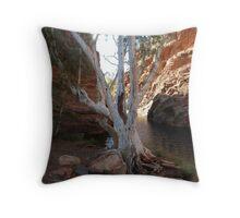 White Gum Tree Throw Pillow