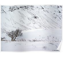 Scottish Winter Scene Poster