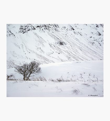 Scottish Winter Scene Photographic Print