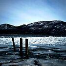 Hudson River by Mary Ann Reilly
