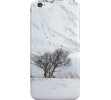Scottish Winter Scene iPhone Case/Skin