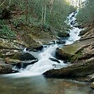 Roaring fork falls by Forrest Tainio