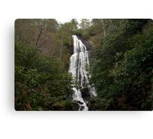 Mingo Falls Canvas Print
