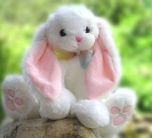 Baby Soft Bunny by Marie Terry