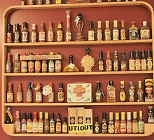Hot Sauce Collection by Donna Adamski