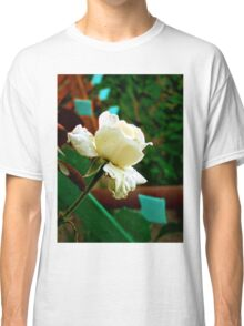 Little white rose Classic T-Shirt