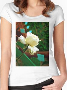 Little white rose Women's Fitted Scoop T-Shirt