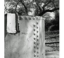 Steel Tank in the Woods Photographic Print