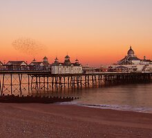 Pier & starlings Eastbourne by fasteddie42