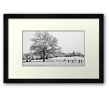 Back Home Framed Print