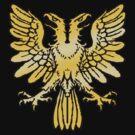 Double Headed Eagle by Stuart Stolzenberg