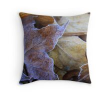 From Autumn to Winter Throw Pillow
