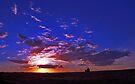 Silo Sunset by Tamara Valjean