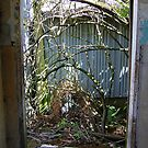 Just outside the door by Tuto