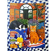 Al Fresco Cats Photographic Print