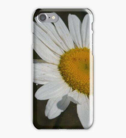 Flower on Lake Michigan iPhone Case/Skin