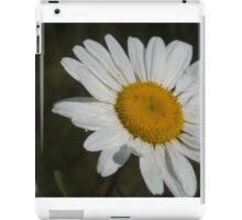 Flower on Lake Michigan iPad Case/Skin