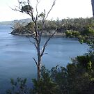 Eggs and Bacon Bay Southern Tasmania by Goggo