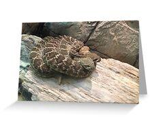 Snake Pile Greeting Card