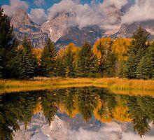 The Beaver Ponds by Albert Dickson