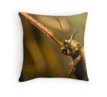 Walking Stick Throw Pillow