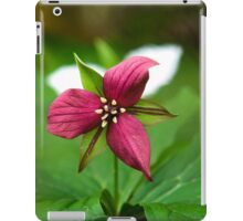 Red Trillium Wildflower iPad Case/Skin