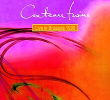 The Cocteau Twins - Live In Brussels 1990 by SUPERPOPSTORE