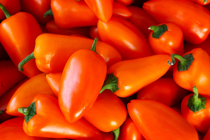 hot peppers by Bill vander Sluys