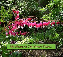 My Heart At Thy Sweet Voice by Max DeBeeson