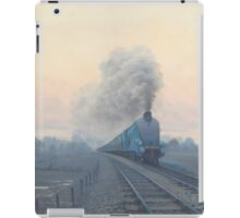 Osprey iPad Case/Skin