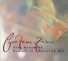 The Cocteau Twins - Tiny Dynamine + Echoes In A Shallow Bay by SUPERPOPSTORE