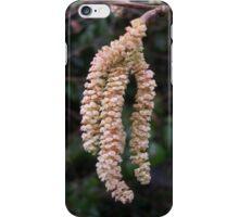 Catkins iPhone Case/Skin