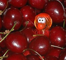 Life IS just a bowl of cherries, y'know ... ask me mate, Bluey by Trevor Needham