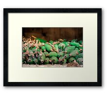 Everything's Gone Green Framed Print