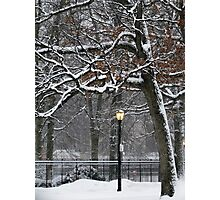 March Snow in New York City  Photographic Print