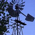 1930's Windmill! by Lesley  Hill
