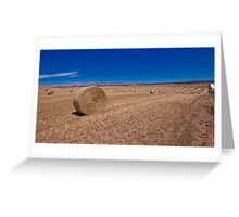 Rolling Plains Greeting Card